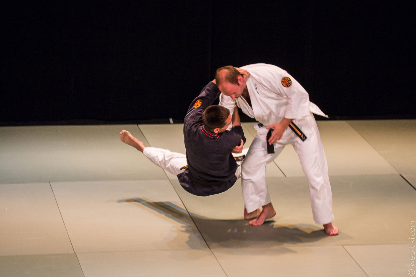 Seishin Tanren Dojo | Japanese martial arts in Hong Kong